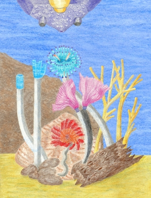 Fan Tube Worms or Feather Duster Tube Worm Rendering/Drawing (Prehistoric Ostracoderm Fish Observing Tube Worms)
